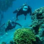 scuba-dive-Eilat-red-sea-1024x725 2