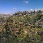 ein karem panorama