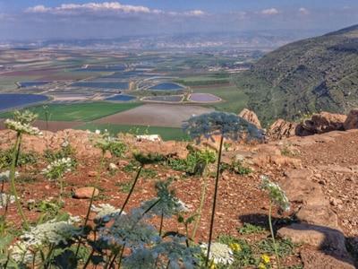 har-saul-panorama