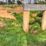 jaffa archaeological park