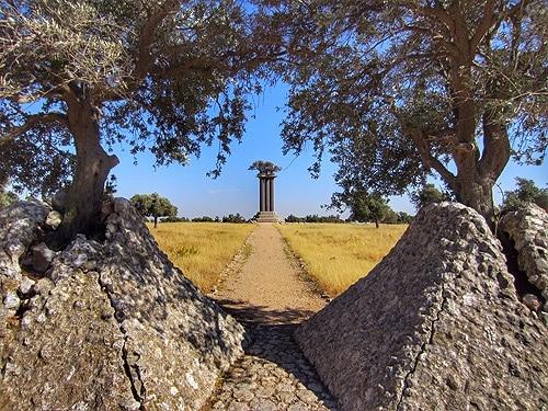 jerusalem-park-of-olives