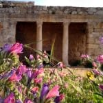 mazor mausoleum