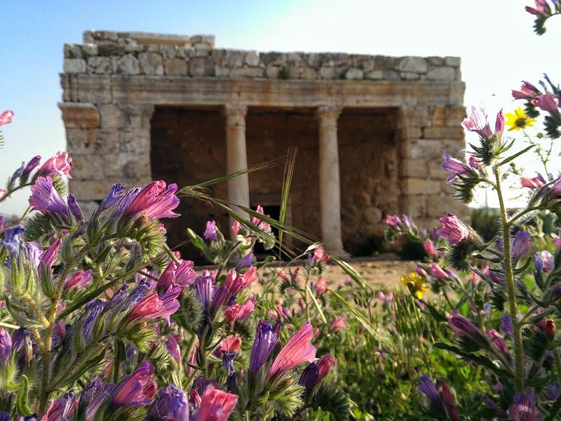 mazor mausoleum 2