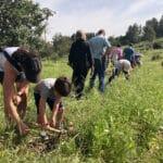 planting-tree-israel