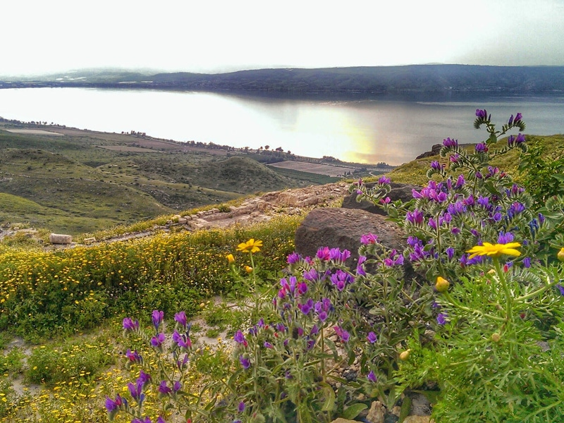 sussita-view-of-the-sea-of-galilee